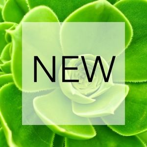 Check out these new listings!